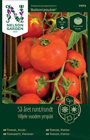 tomat-kruk--balkonzauber-1