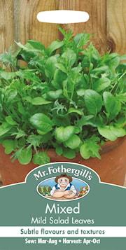 sallat---babyblad-mild-1