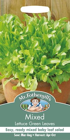 sallat-green-leaves-1