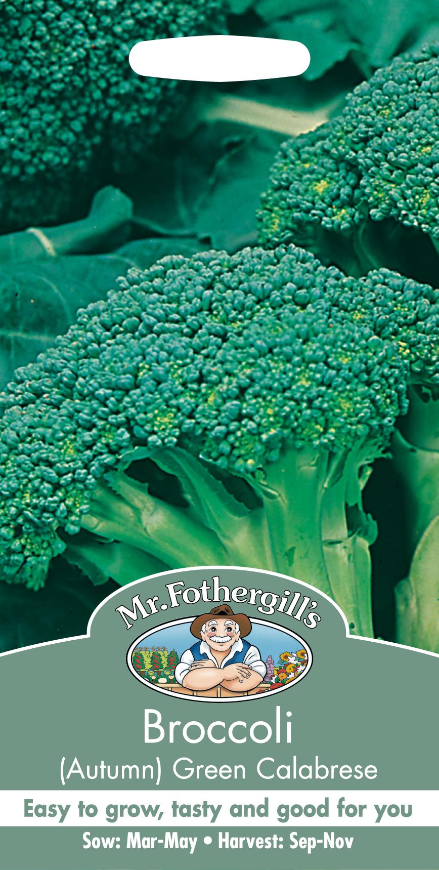 Broccoli  'Green Calabrese