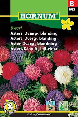 aster-dvrg--blandning-1