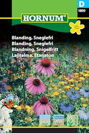 blomstermix-snigelfritt-1