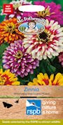 zinnia-whirlygig-mix-3