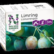 limring-3m-1