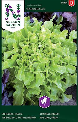 sallat-plock--salad-bowl-1
