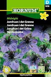 jungfrun-i-det-grna-midnight-1