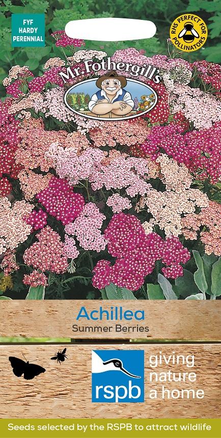 Röllika 'Summer Berries