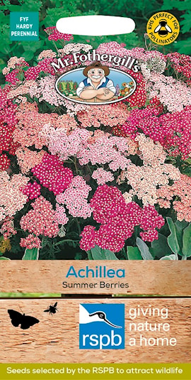 rllika-summer-berries-1