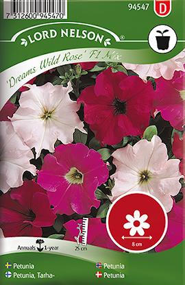 petunia-dreams-wild-rose-mix-1