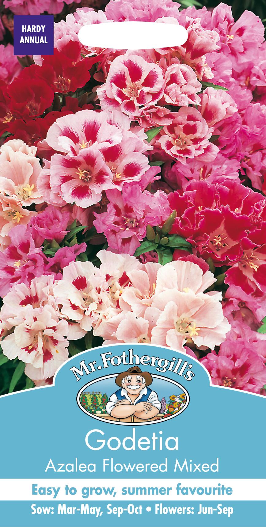 Atlasblomman 'Flowered Mixed