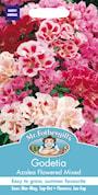 atlasblomman-flowered-mixed-1