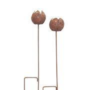 vrmeljushllare-tulpan-h60cm-1