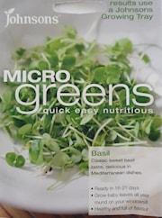 microgreens-basilika-1