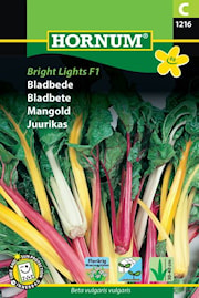 mangold-bright-lights-f1-1