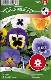 pens-florist-strain-storbl-bl-frger-1