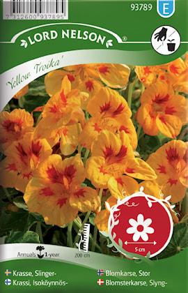 krasse-slinger--yellow-troika-1