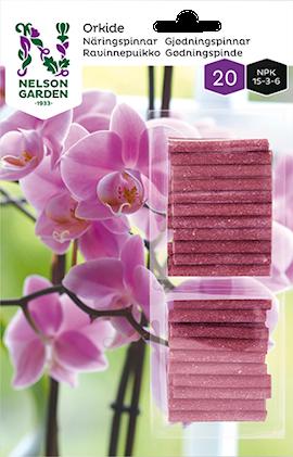 nringspinnar-orkid-20st-1