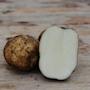 potatis---rocket-1-kg-1
