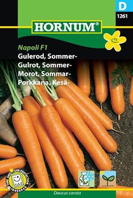 morot-sommar--napoli-f1laguna-f1-hybride-1