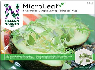 Micro Leaf, Bladsarepta