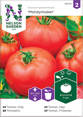 tomat-frilands--moneymaker-1