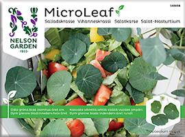 micro-leaf-salladskrasse-1