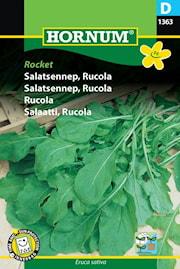 rucola-rocket-1