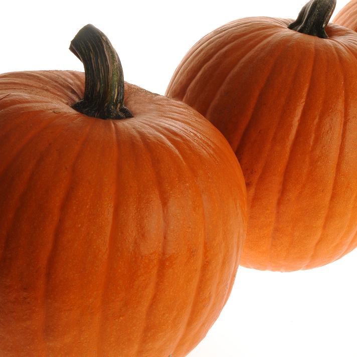 347/ Halloweenpumpa 'Jack of all Trades