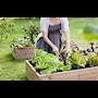 hasselfors-garden-odlingsbnk-svart-120x80cm-3