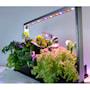 pmf-m30-2-eco-grow-1