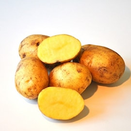 ekologisk-potatis-carolus-1kg-1
