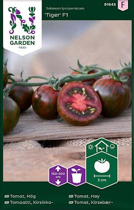 tomat-tiger-f1-1