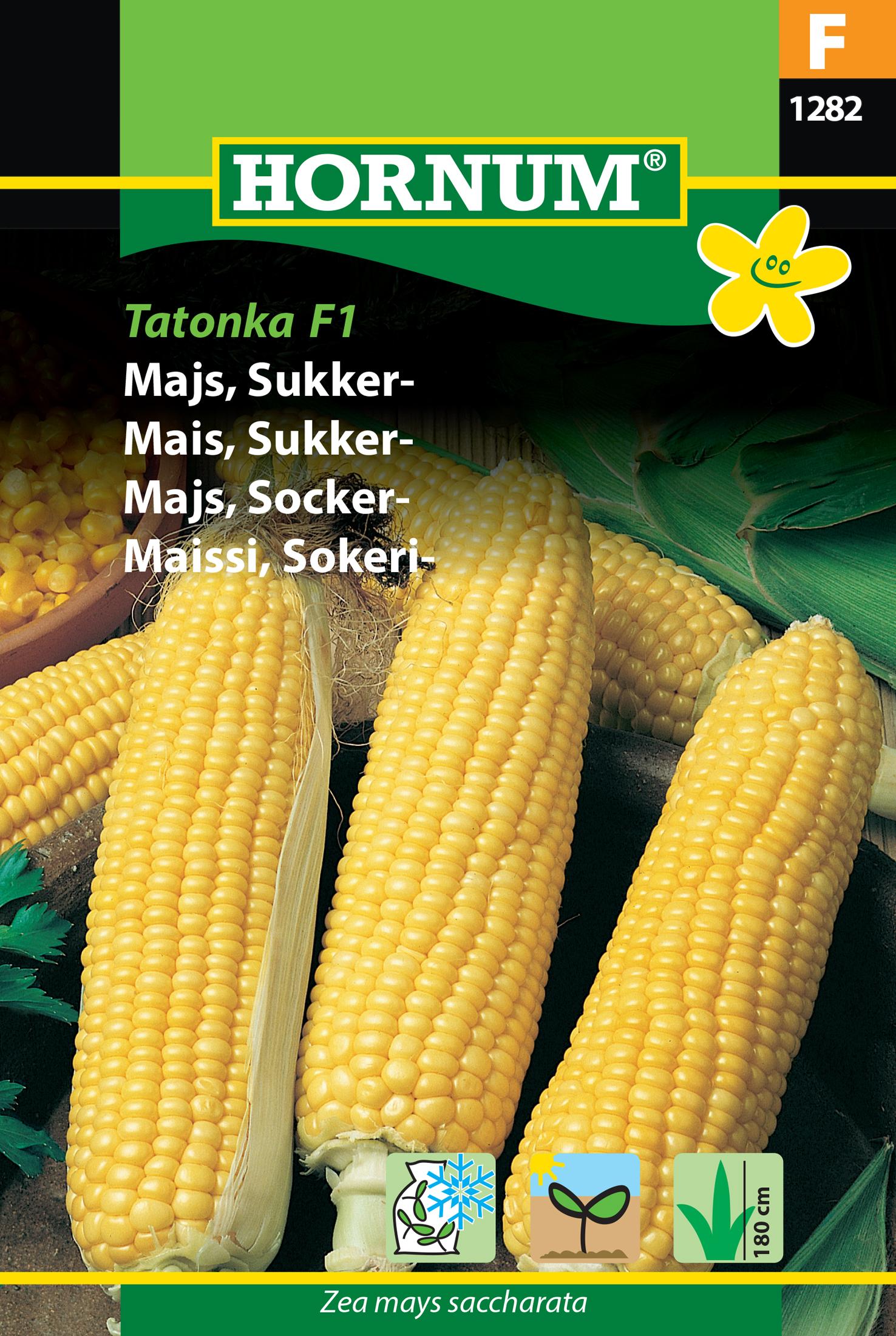 Majs, Socker- 'Tatonka' F1