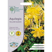 guldakleja-yellow-queen-1