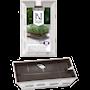 odlingskit-med-groddar-3