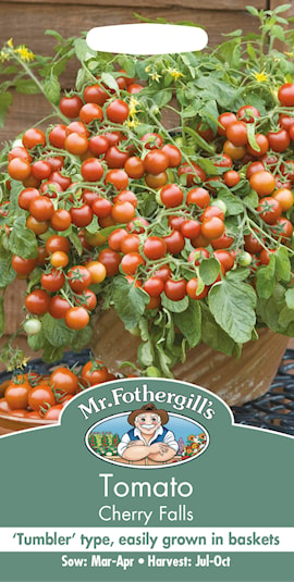 krsbrs--tomat-cherry-falls-1