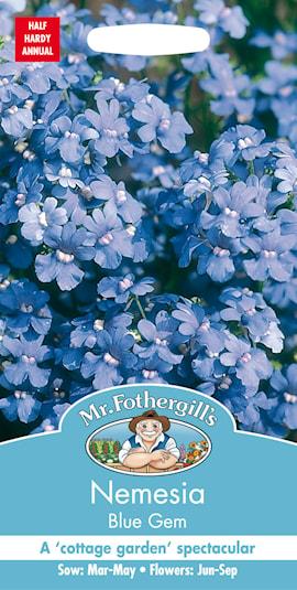 nemesia-blue-gem-1