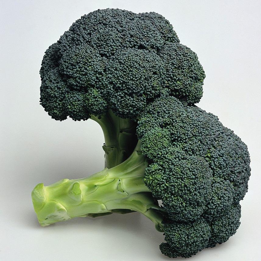 318/ Broccoli 'Ironman' F1