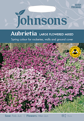 aubrietia-large-flowered-mixed-1