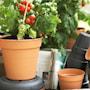 green-basics-growpot-30cm-leafgreen-2