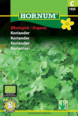 koriander-organic-1
