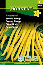 brytbna-neckargold-1