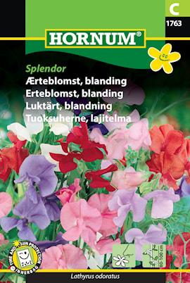 luktrt-blandning-splendor-1