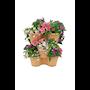 green-basics-vertical-garden-46cmterra-2