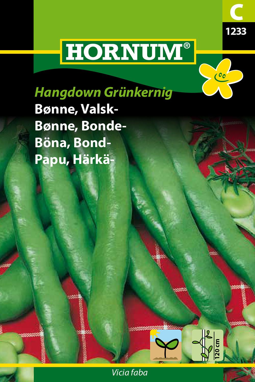Bondböna 'Hangdown