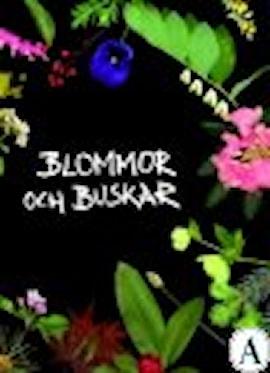 blommor-och-buskar-1
