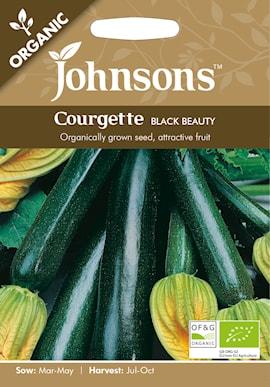 sommarsquash-black-beauty-organic-1