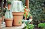 green-basics-grow-house-round-30cm-4
