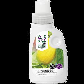 giva-citrus-nring-250ml-1