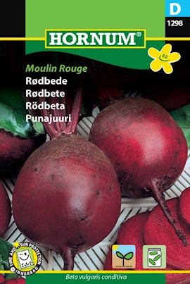 rdbeta-moulin-rouge-1